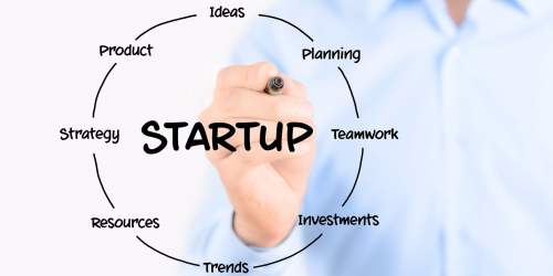 startup consultant role